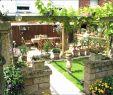 Garten Fliesen Inspirierend 31 Neu Naturstein Wohnzimmer Einzigartig