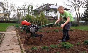 36 Genial Garten Fräsen Schön