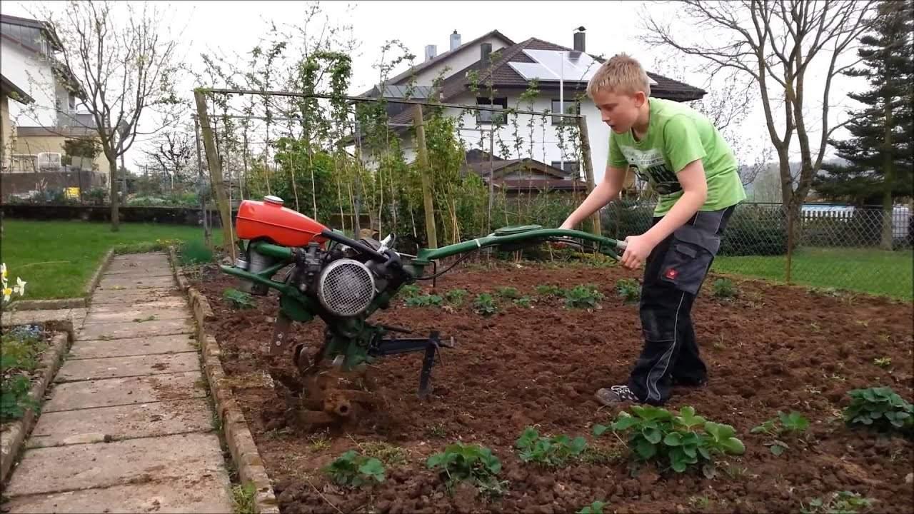 Garten Fräsen Frisch Garten Fräsen Und Saatbett Vorbereiten