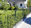 Garten Gabionen Das Beste Von Home Deluxe Doppelstabmattenzaun Anthrazit 0800 Mm X 50 M