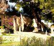 Garten Gewächshaus Das Beste Von Garten Ideen Selber Bauen