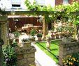 Garten Grillplatz Genial Grillplatz Garten Ideen — Temobardz Home Blog