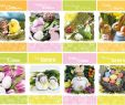 Garten Großhandel Luxus Großhandel Für Wiederverkäufer Großhandel Online