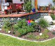 Garten Günstig Gestalten Einzigartig Weißer Garten Pflanzplan — Temobardz Home Blog