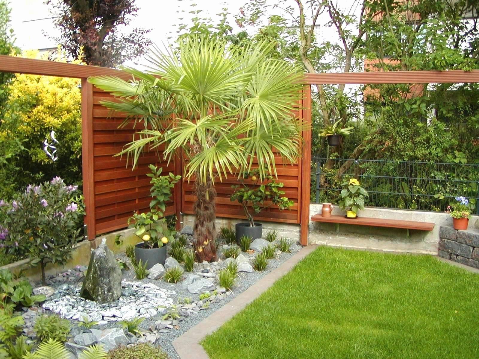 bonsai garden picture of 42 neu bonsai garten stock of bonsai garden