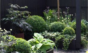 39 Frisch Garten Harke Inspirierend