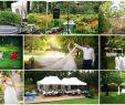 Garten Hochzeit Inspirierend Eine Romantische Hochzeitsfeier Im Eigenen Garten Hat