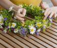 Garten Hochzeit Neu Nicht Nur Für sommerbräute Ein Blumenkranz Für Haare