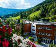 Garten Hotel Daxer Frisch Hotel Der Waldhof Zell Am See • Holidaycheck Salzburger