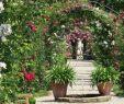 Garten Hütte Neu Datei Rosenneuheitengartenbeutigbögen2 – Stadtwiki Baden
