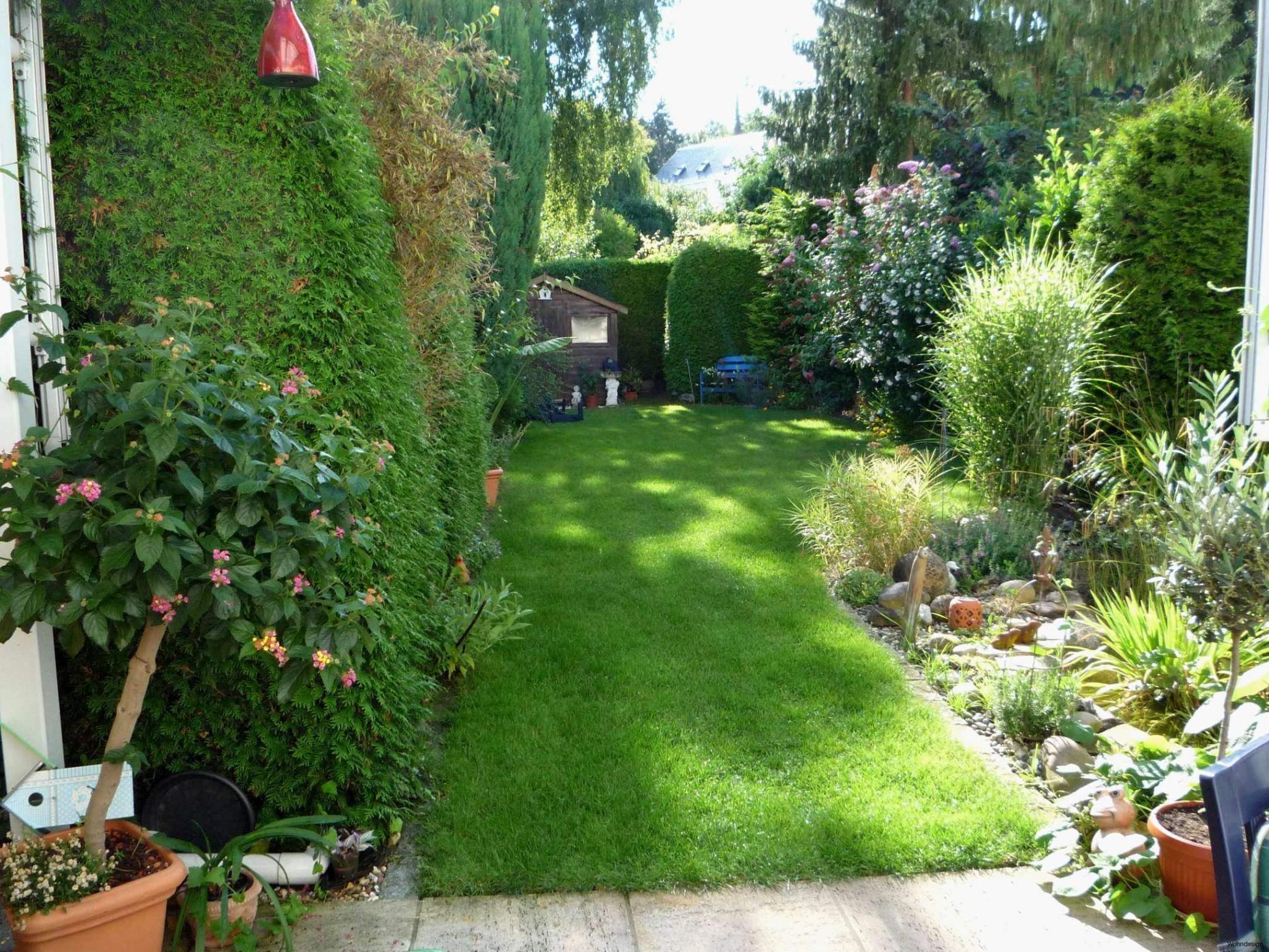 Garten Ideen Günstig Elegant Weißer Garten Pflanzplan — Temobardz Home Blog