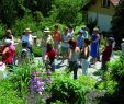 Garten Im Quadrat Genial Heilkräuter Schaugarten In Teufen Ar Appenzell Ausserrhoden