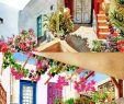 Garten Katzensicher Machen Frisch Die 807 Besten Bilder Zu Watercolor Akvarel