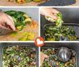 Garten Komposter Inspirierend Bokashi Eimer Küchenabfälle In Wertvollen Flüssigdünger