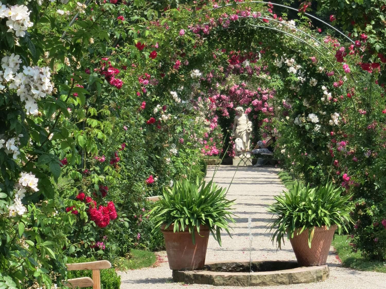 RosenneuheitengartenBeutigBögen2
