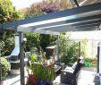 Garten Lampions Einzigartig Gartendeko Selbst Machen — Temobardz Home Blog
