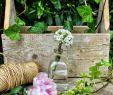 Garten Lampions Genial ♡♡♡ich Schicke Euch Ganz Liebe sonntagsgrüße Und Hoffe