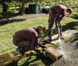 Garten Landschaftsbau Tätigkeiten Genial Gärtner In Garten Und Landschaftsbau