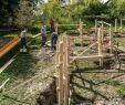 Garten Landschaftsbau Tätigkeiten Inspirierend Gärtner In Garten Und Landschaftsbau