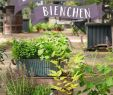 Garten Magazin Neu Blümchen Und Bienchen Set