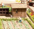 Garten Margerite Genial Noch Obstgarten Set