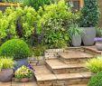 Garten Mediterran Genial Landscape Ideas for Your Home