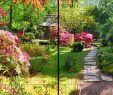 Garten Mit Steinen Gestalten Genial Natur Panorama Xl Bedruckte Sichtschutzstreifen Für Doppelstabmattenzaun