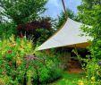 Garten Oase Genial 🌺💚 Schöner Tag In Meinem Lieblingsgarten Lieblingsplatz
