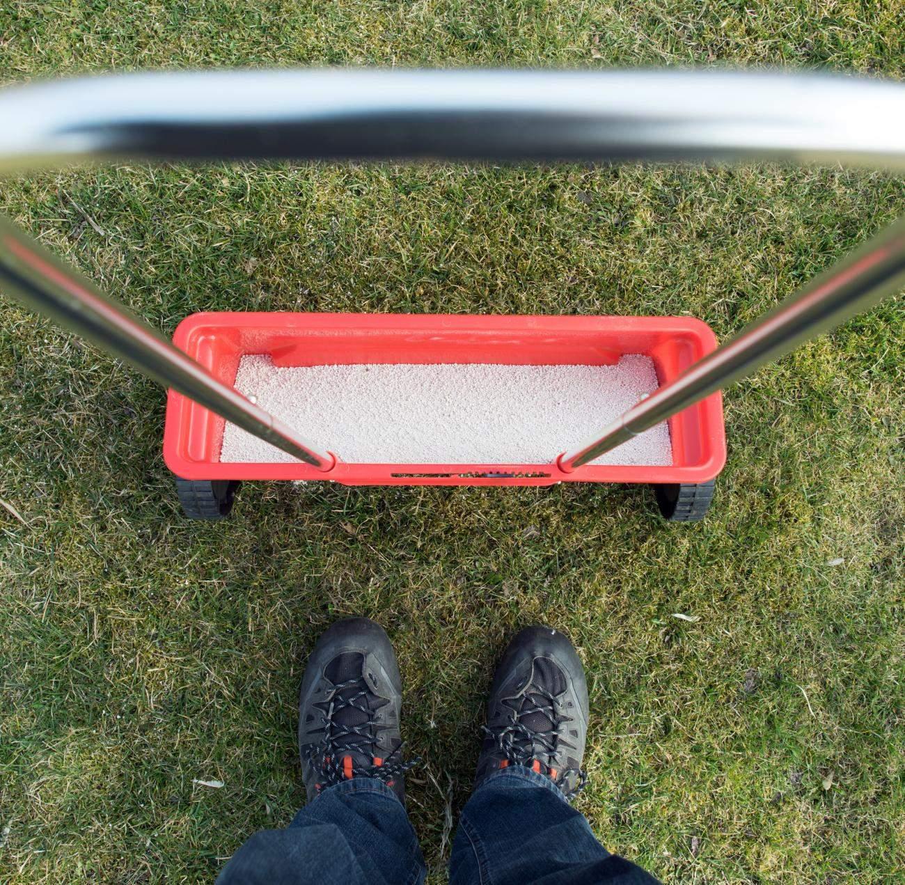 Schoenheitskur fuer den Rasen Tipps zum Duengen und Vertikutieren