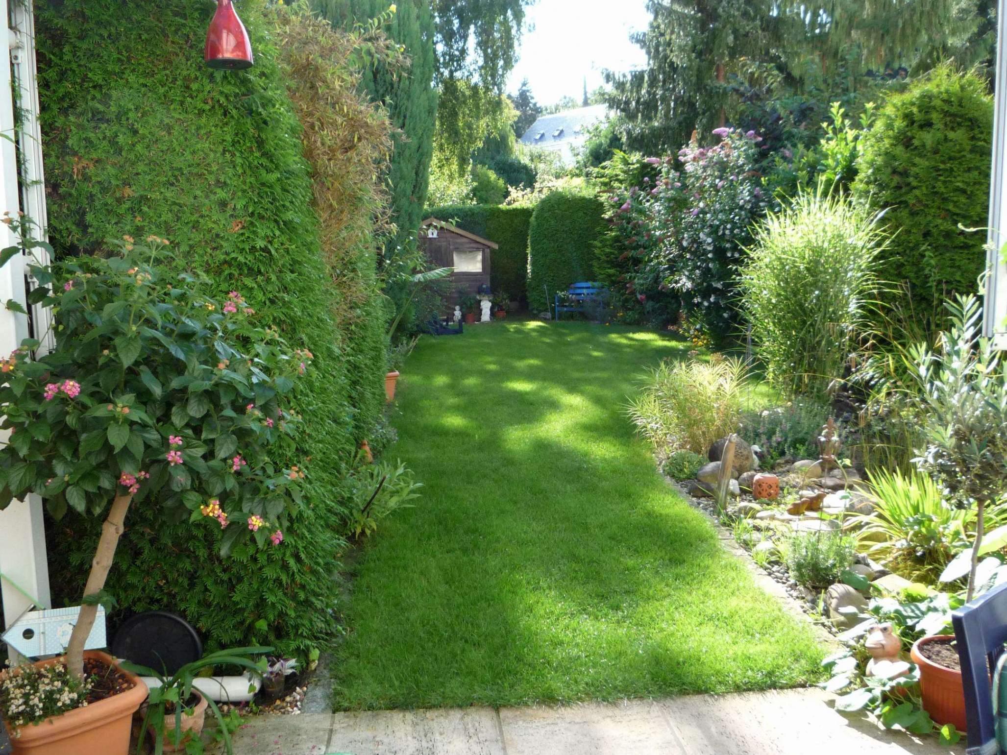 Garten Pflege Reizend Garten Pflanzen Sichtschutz — Temobardz Home Blog