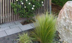 33 Inspirierend Garten Pflegeleicht Reizend