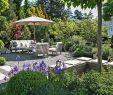 Garten Planen Reizend Pflanzplanung Sitzplatz Bepflanzung