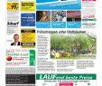 Garten Planen software Kostenlos Schön Wip 10 06 2015 by Pfeiffer Me Nfabrik Gmbh & Co Kg issuu