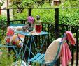 Garten Relaxstuhl Inspirierend 27 Luxus Garten Büsche Schön