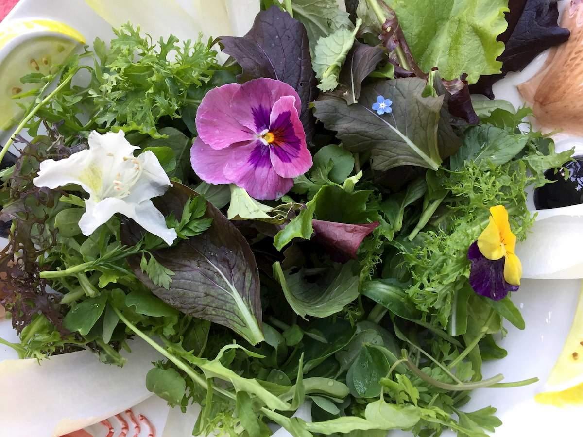 essbare blueten salat