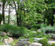 Garten Schilder Einzigartig Gorgeous Green 🌳💚🌳 😂 𝐅𝐨𝐥𝐥𝐨𝐰