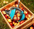 Garten Shop 24 Frisch Tipps Und Tricks Im Garten Mit Dem Gartenrollsieb Sammelst