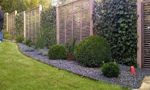 34 Neu Garten Sichtschutz Pflanzen Einzigartig