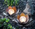 Garten solarleuchten Das Beste Von Bezauberndes solar Lotusblüten Duett