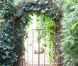 Garten Spalier Das Beste Von Rosenbogen Mit Tür Metall Rost Rund Ohne Zierspitze