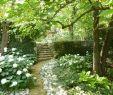 Garten Steine Deko Reizend Pin Von Emanuel Auf Garten