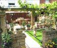 Garten Trennwand Einzigartig Gartengestaltung Bilder Sichtschutz Luxus 45 Einzigartig