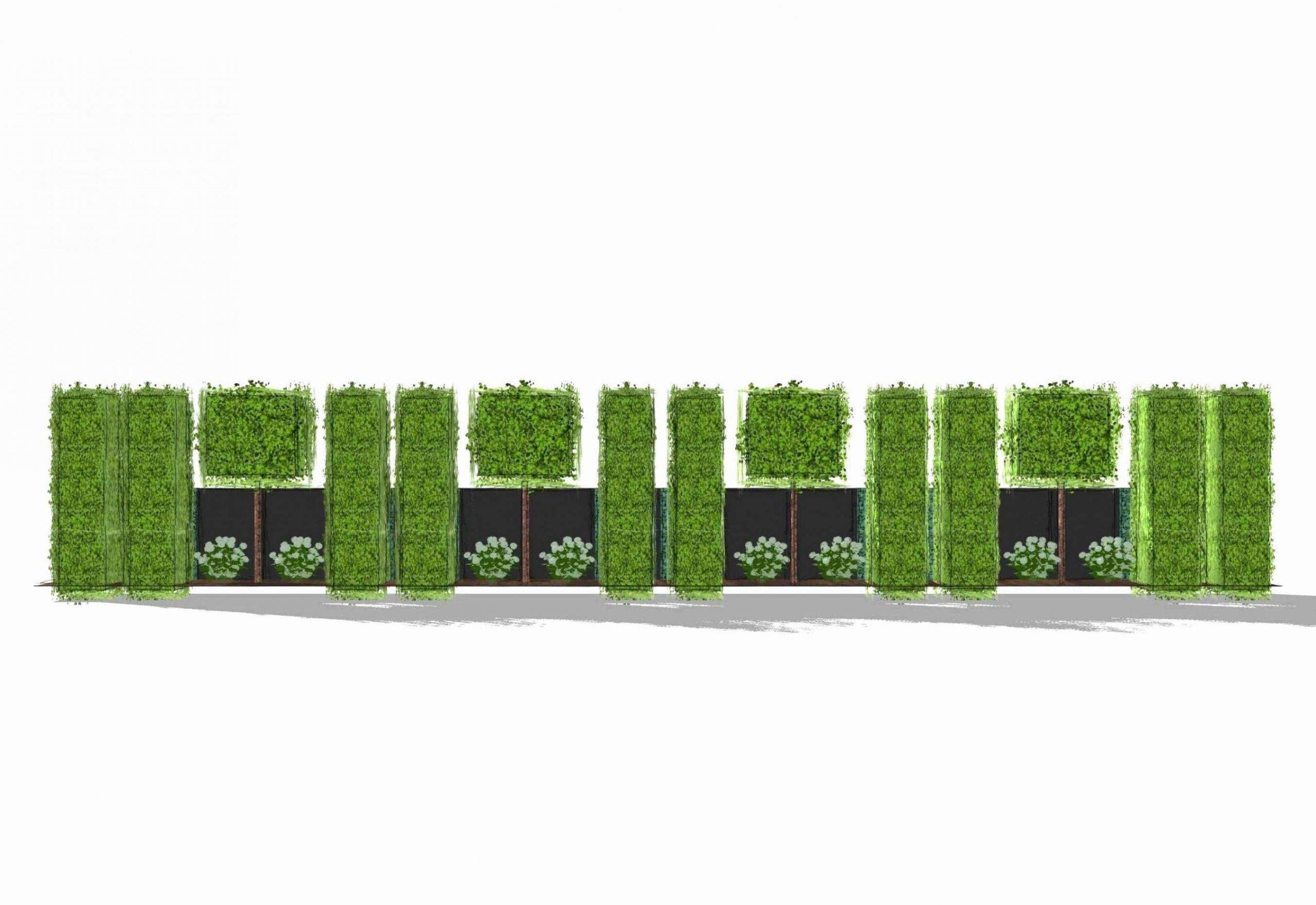stromverteiler garten frisch winterharte kubelpflanzen als sichtschutz temobardz home blog of stromverteiler garten scaled