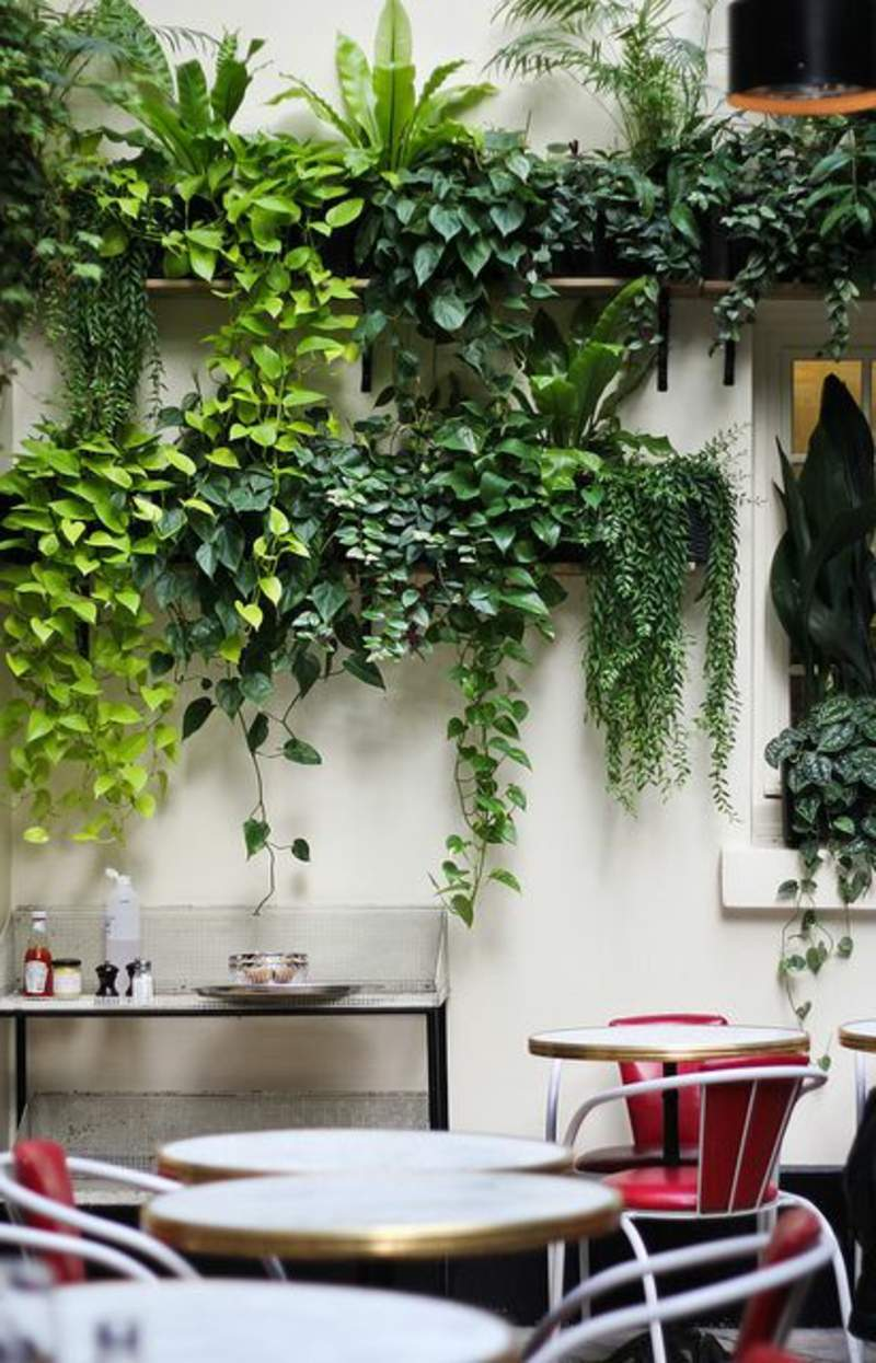 garten busche das beste von sadzenie balkonu 60 oryginalnych pomysac282c2b3w of garten busche