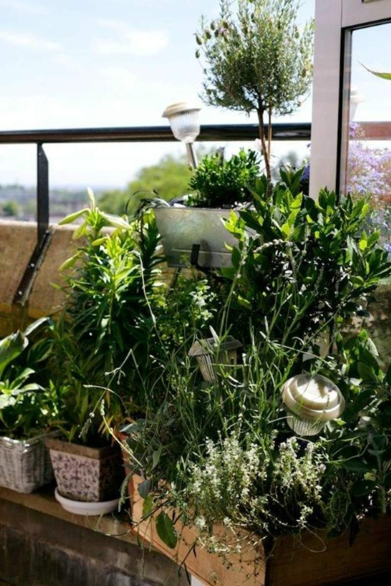 garten busche genial sadzenie balkonu 60 oryginalnych pomysac282c2b3w of garten busche 1