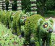 Garten Und Landschaftsbau Berlin Luxus Lemur topiaries In Montreal Canada