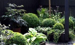 32 Elegant Garten Und Landschaftsbau Dresden Neu
