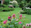 Garten Und Landschaftsbau Firmen Berlin Das Beste Von Garten Und Landschaftsarchitekt — Temobardz Home Blog