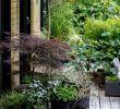 Garten Und Landschaftsbau Firmen Berlin Genial Pin Von Living & Interior Design Auf House & Garden Casa Y