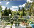 Garten Versicherung Einzigartig Die 111 Besten Bilder Von Garten Ideen Inspiration Für